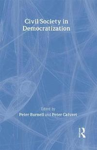 Civil Society in Democratization (inbunden)
