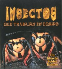 Insectos Que Trabajan En Equipo (Insects That Work Together) (inbunden)