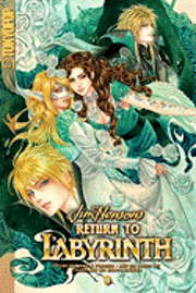 Return to Labyrinth: v. 4 (h�ftad)