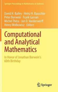 Computational and Analytical Mathematics (inbunden)