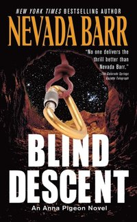 Blind Descent (e-bok)