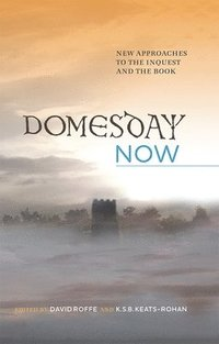 Domesday Now - David Roffe, K S B Keats-Rohan - Bok