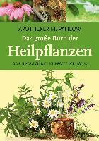 deutsche grammatik heike pahlow pdf