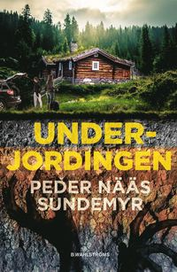 Bokomslag: Underjordingen