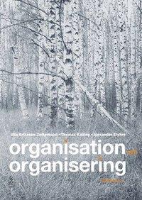Organisation och organisering pdf