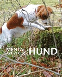 Mental aktivering för din hund