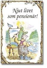 läsa Njut livet som pensionär! pdf