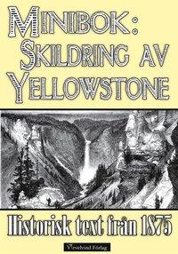 Skildring av Yellowstone 1875 epub, pdf