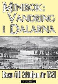 En vandring i Dalarnas fjäll år 1881 epub, pdf