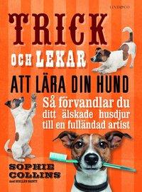 Trick och lekar att lära din hund : Så förvandlar du ditt älskade husdjur.. pdf epub