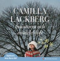 Omslagsbild: ISBN 9789179535827, Snöstorm och mandeldoft