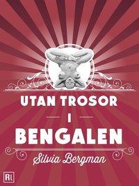 läsa Utan trosor i Bengalen pdf, epub
