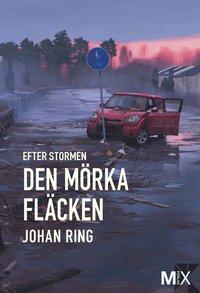 uppkopplad Efter stormen. Den mörka fläcken pdf ebook