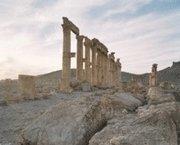 Palmyra epub pdf