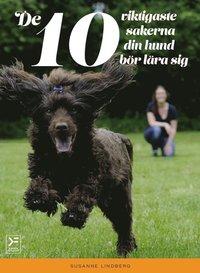 ladda ner De 10 viktigaste sakerna din hund bör lära sig pdf ebook