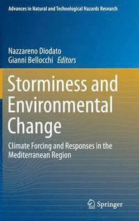 Storminess and Environmental Change (inbunden)