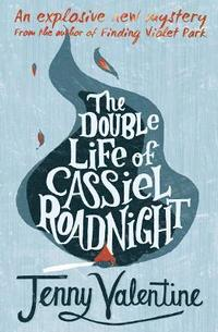 The Double Life of Cassiel Roadnight (inbunden)