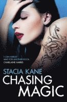 Chasing Magic (e-bok)