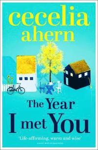The Year I Met You (pocket)
