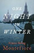One Night in Winter