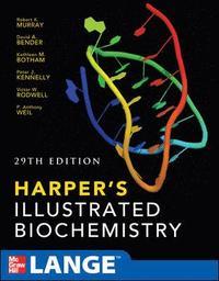 Harpers Illustrated Biochemistry 29th Edition (h�ftad)