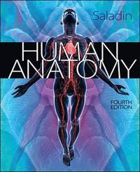Human Anatomy (h�ftad)