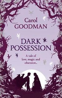 Dark Possession: The Angel Stone (e-bok)