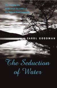 Seduction of Water (e-bok)