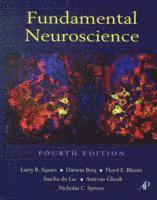 Fundamental Neuroscience (inbunden)