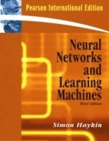 Neural Networks and Learning Machines (h�ftad)