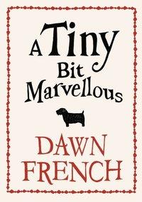 Tiny Bit Marvellous (e-bok)