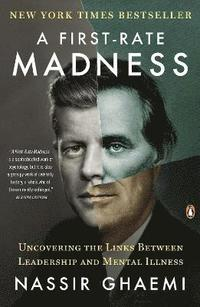 A First-Rate Madness (h�ftad)