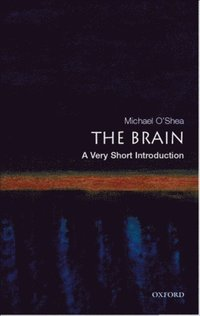 Brain: A Very Short Introduction