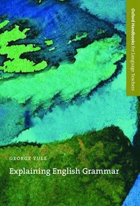 Explaining English Grammar (e-bok)