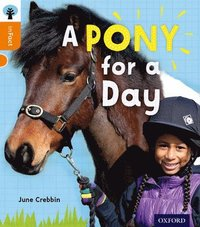 Oxford Reading Tree inFact: Level 6: A Pony for a Day (h�ftad)