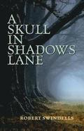 Rollercoasters: A Skull in Shadows Lane Class Pack