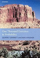One Thousand Exercises in Probability (h�ftad)