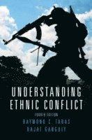 Understanding Ethnic Conflict (h�ftad)