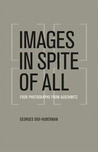 Images in Spite of All (h�ftad)