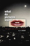 What Do Pictures Want?