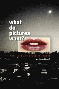 What Do Pictures Want? (h�ftad)