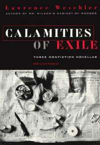 Calamities of Exile (e-bok)