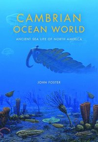 Cambrian Ocean World (h�ftad)