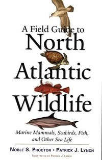 A Field Guide to North Atlantic Wildlife (h�ftad)