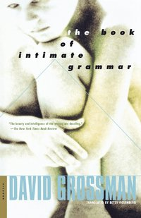 The Book of Intimate Grammar (inbunden)