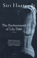 The Enchantment of Lily Dahl (h�ftad)