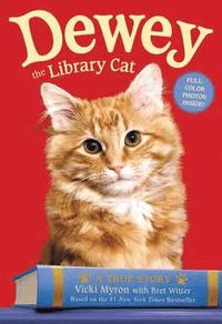 Dewey the Library Cat: A True Story (pocket)