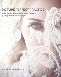 Picture Perfect Practice: A Self-Training Guide To Mastering The Challenges Of Taking World-Class Photographs (h�ftad)