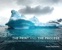 The Print and the Process: Taking Compelling Photographs from Vision to Expression (h�ftad)