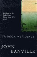 The Book of Evidence (h�ftad)